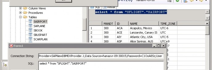 SAP HANA and DelphiXE2 MDX Error